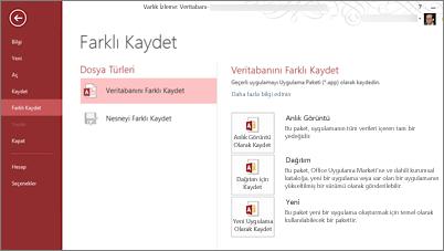 Farklı Kaydet ekranındaki Veritabanı Olarak Kaydet seçenekleri