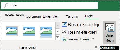 Windows için Excel Şeritte alt metin düğmesi