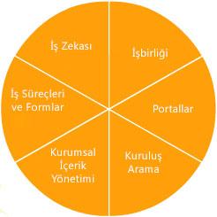 SharePoint server 2007 özellikleri