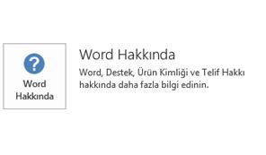 Office, Microsoft Installer teknolojisi kullanılarak yüklendiğinde Uygulama ve Güncelleştirme bilgisi bu şekilde görünür.