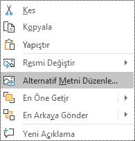 PowerPoint online 'daki alternatif metni Düzenle seçeneğini gösteren bir resim için bağlam menüsü.