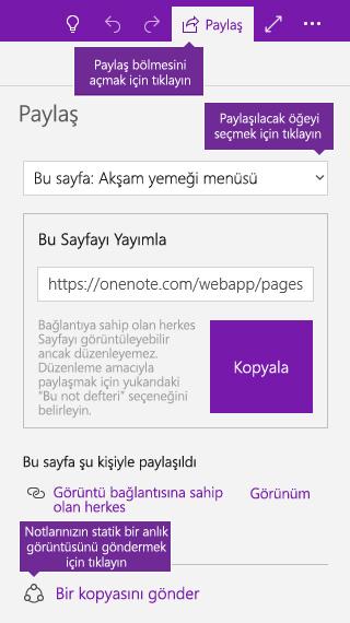 OneNote'tan not kopyalarını gönderme işleminin ekran görüntüsü