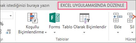 Excel'de Düzenle düğmesi