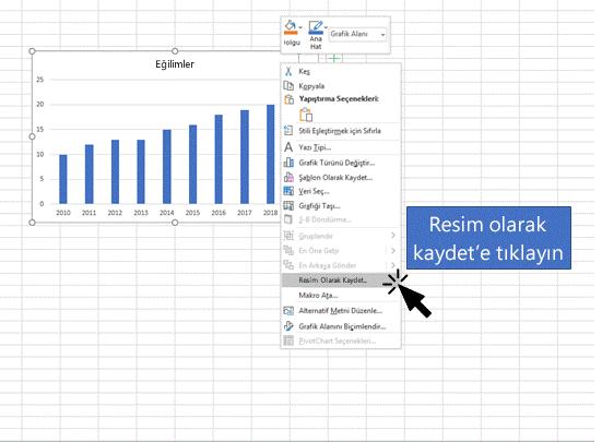 Bir kullanıcının bir nesneyi bir Excel sayfasına resim olarak kaydettiğini gösteren bir görüntü.