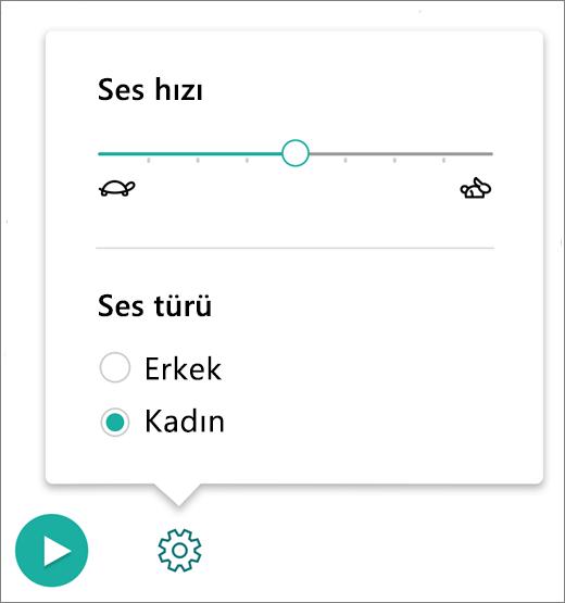 OneNote için Öğrenme Araçları'nın Tam Ekran Okuyucu bölümündeki Ses Denetimleri Menüsü.