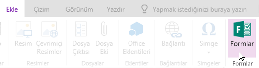 OneNote Online'da Form Ekle seçeneği