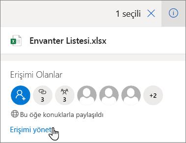 OneDrive Iş 'te erişimi Yönet bağlantısını gösteren Ayrıntılar bölmesi