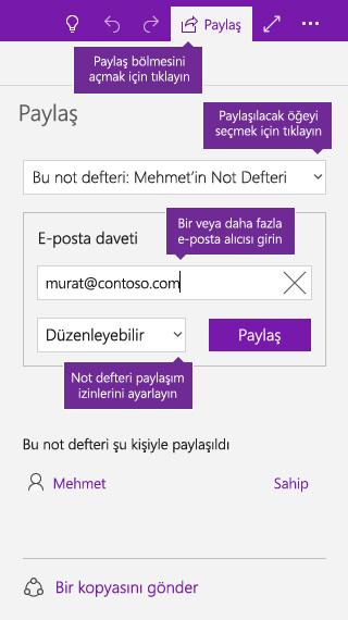 OneNote'ta not defterinin tamamını paylaşma işleminin ekran görüntüsü