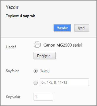 Chrome Yazdır bölmesi seçenekleri