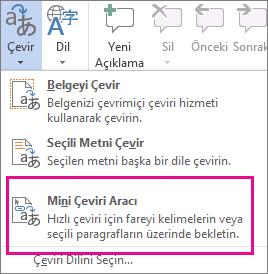 Mini Çeviri Aracı