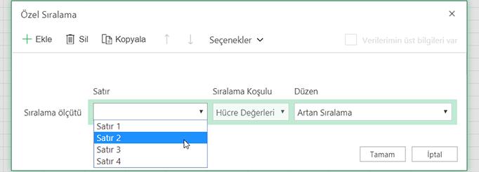 Soldan sağa sıralama seçildiğinde, özel sıralama iletişim kutusundaki satır açılan listesi açık