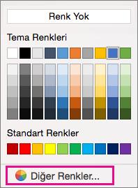 Diğer Renkler seçeneği vurgulanmış, gölgelendirme renk seçenekleri.