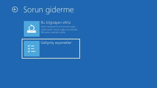 Windows Kurtarma Ortamı'nda sorun giderme ekranı.