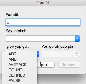 Formül kutusunda Fonksiyon yapıştır listesinden fonksiyonu seçin