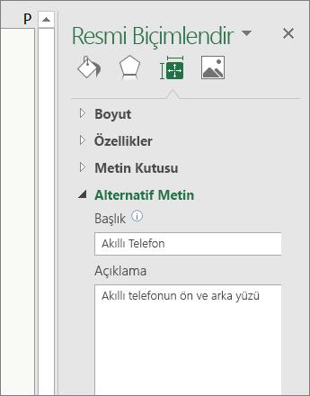 Resim Biçimlendir bölmesinin Alternatif Metin alanında seçili resmin açıklandığı ekran görüntüsü