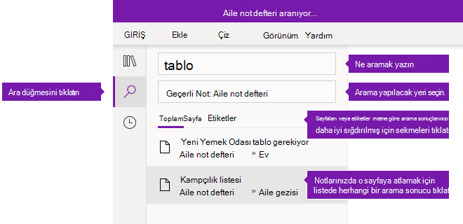 Windows 10 için OneNote'ta arama bölmesi seçenekleri