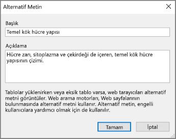 OneNote'ta, Başlık ve Açıklama alanlarında örnek metinlerin bulunduğu alternatif metin iletişim kutusunun ekran görüntüsü.