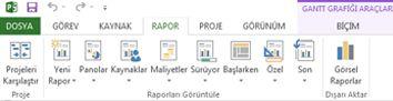 Project 2013'teki Rapor sekmesi
