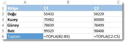 Excel çalışma sayfasında görünen formüller