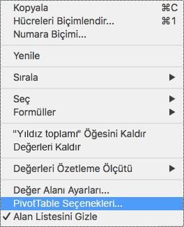 Mac için Excel bağlam menüsünde PivotTable Seçenekleri.