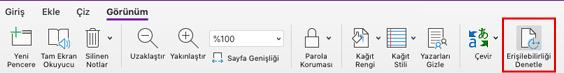 Mac için OneNote denetleme Erişilebilirlik aracı