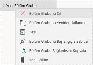Windows 10 uygulaması için OneNote'ta bölüm gruplarını silme
