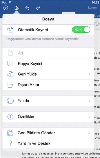 iOS için Word'deki dosya düğmesi, yazdırma, kaydetme ve geri bildirim gönderme gibi çeşitli işlemler yapmanızı sağlar.