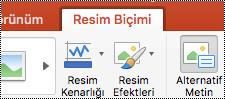 Mac için PowerPoint'te şeritteki Alternatif Metin düğmesi