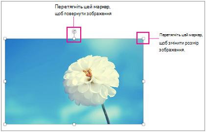 Зображення з виділеними маркерами змінення розміру