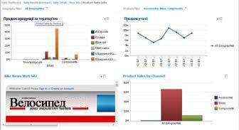Приладна дошка «PerformancePoint» із двома застосованими фільтрами