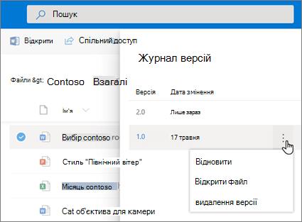 Знімок екрана: відновлення файлів у службі OneDrive для бізнесу в області відомостей у старій версії версії, журнал версій
