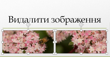Якщо натиснути й утримувати клавішу Ctrl, можна вибрати кілька зображень.