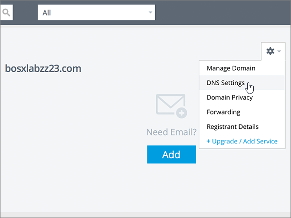 Пункт DNS Settings (Параметри DNS) у списку