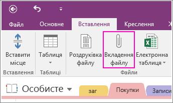 Знімок екрана: кнопка вставлення вкладеного файлу в програмі OneNote2016.