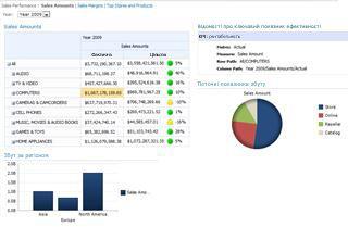 зразок приладної дошки, розміщеної на сервері sharepoint server 2010