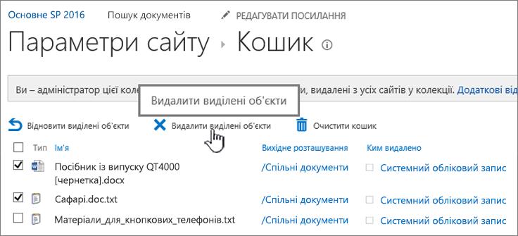 """Сторінка кошика SharePoint 2016 із виділеною кнопкою """"Видалити"""""""