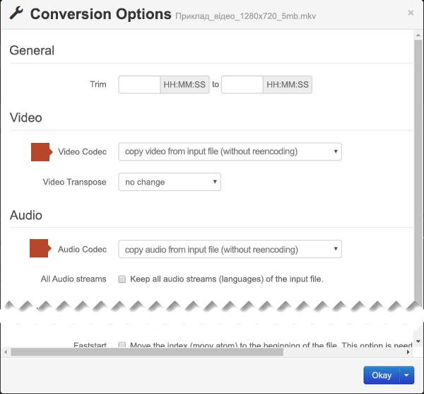 """Діалогове вікно """"Conversion Options"""" (Параметри перетворення) з параметрами відео- й аудіокодеків"""