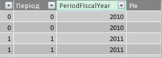 """Стовпець """"Фінансовий рік періоду"""""""