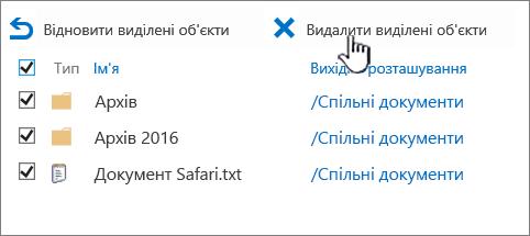Кошик служби SharePoint 2016 2-го рівня та всі елементи, що вибрано видалити виділені