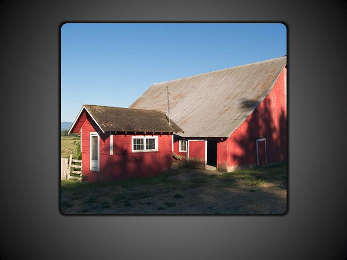 Шаблон фотоальбому з ефектом проявлення зі збільшенням