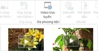 Video trực tuyến trong tài liệu Word
