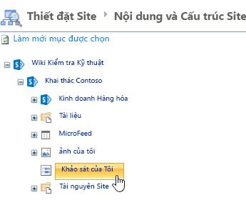 Trong cửa sổ trình quản lý trang web, bấm khảo sát trên thanh khởi động nhanh