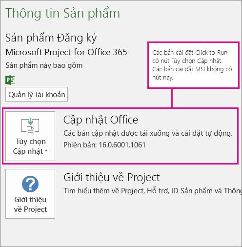 Các bản cài đặt Click-to-run có nút Tùy chọn Cập nhật trên trang Tài khoản. Các bản cài đặt dựa trên nền tảng MSI không có nút này.