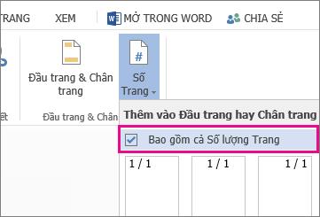Hình ảnh của hộp kiểm để chọn bao gồm số đếm trang với số trang trong một tài liệu (trang X/Y).