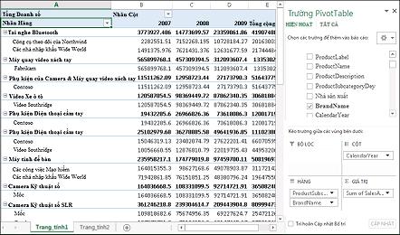 PivotTable thể hiện dữ liệu mẫu