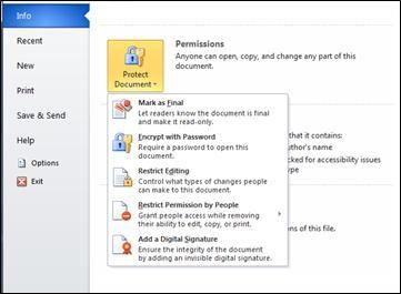 Nút Bảo vệ Tài liệu với các tùy chọn