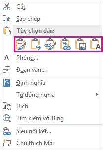 Nhóm nút của năm tùy chọn để dán biểu đồ Excel vào Word