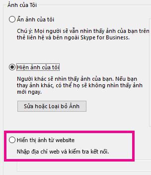 Ảnh chụp màn hình phần của Lync cửa sổ tùy chọn ảnh của tôi với chèn ảnh từ trang web highlghted
