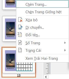 Để chèn một trang, bấm chuột phải vào một trang trong ngăn Dẫn hướng Trang.