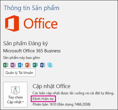 Thông tin tài khoản sản phẩm cho đăng ký Office 365 Business của Kênh Hiện tại